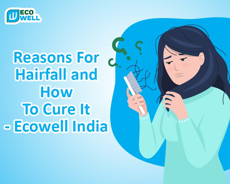 Reasons For Hair fall And How To Cure It    Ecowell India